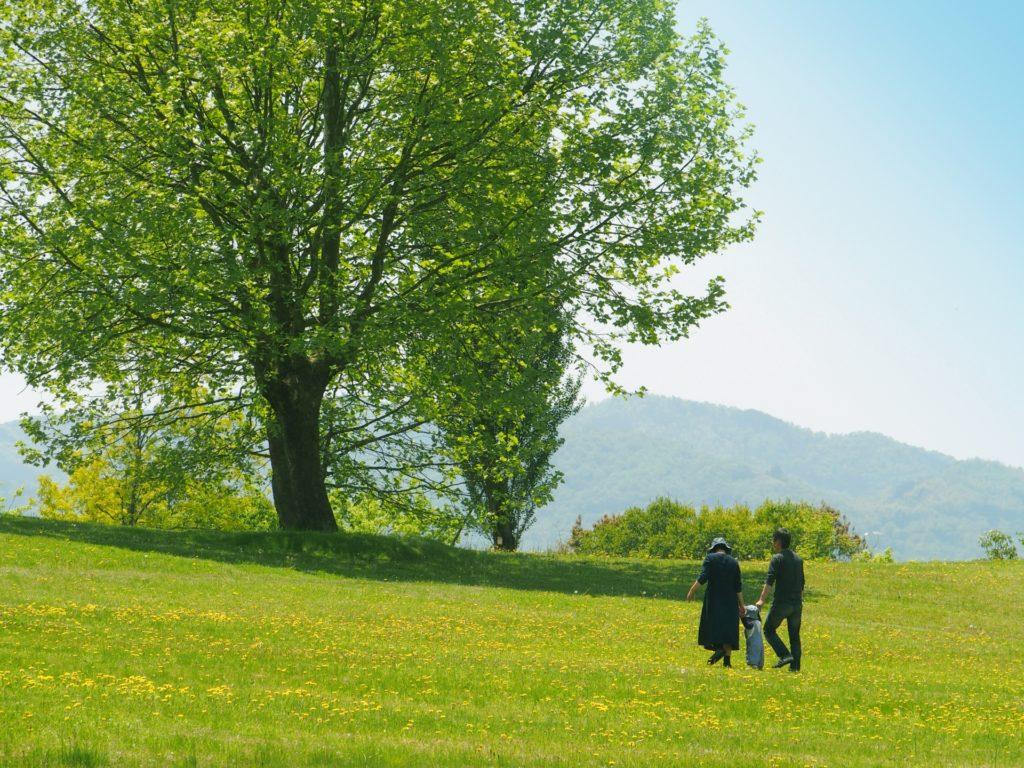 家族で公園を散歩している写真